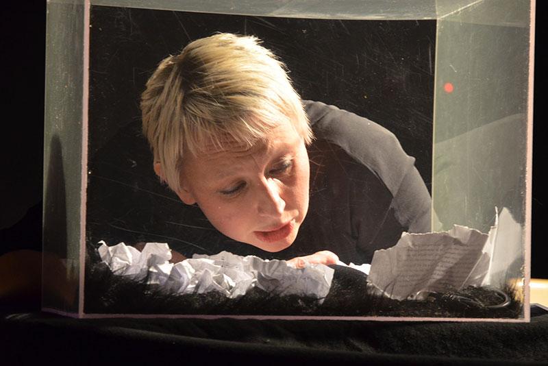 Anne Pajunen